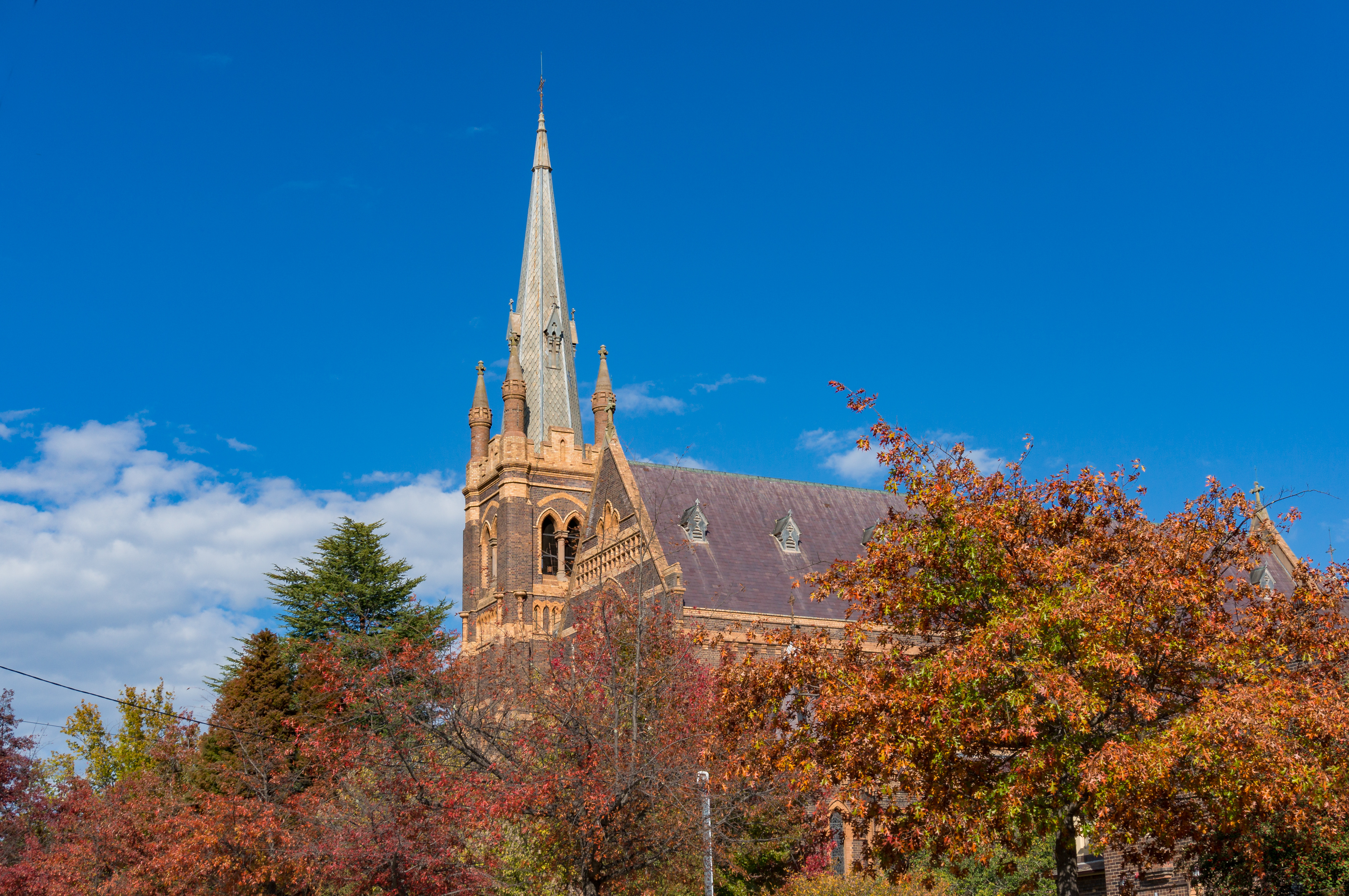 Go North and Live It Up Big in NSW- Armidale Has It All and More